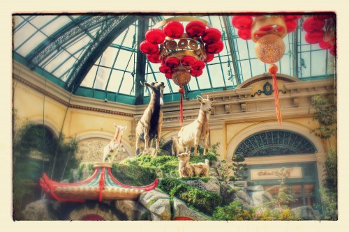 Google Photos Creation of the Bellagio Conservatory