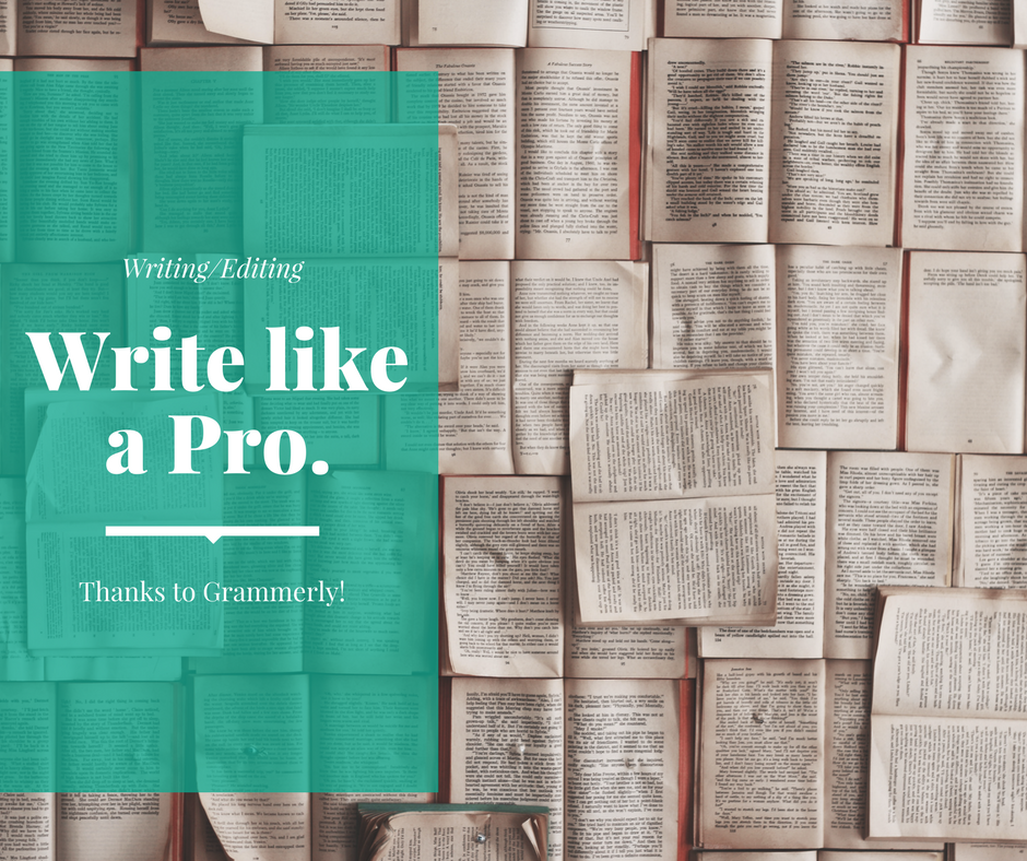 pro writing aid vs grammarly correct